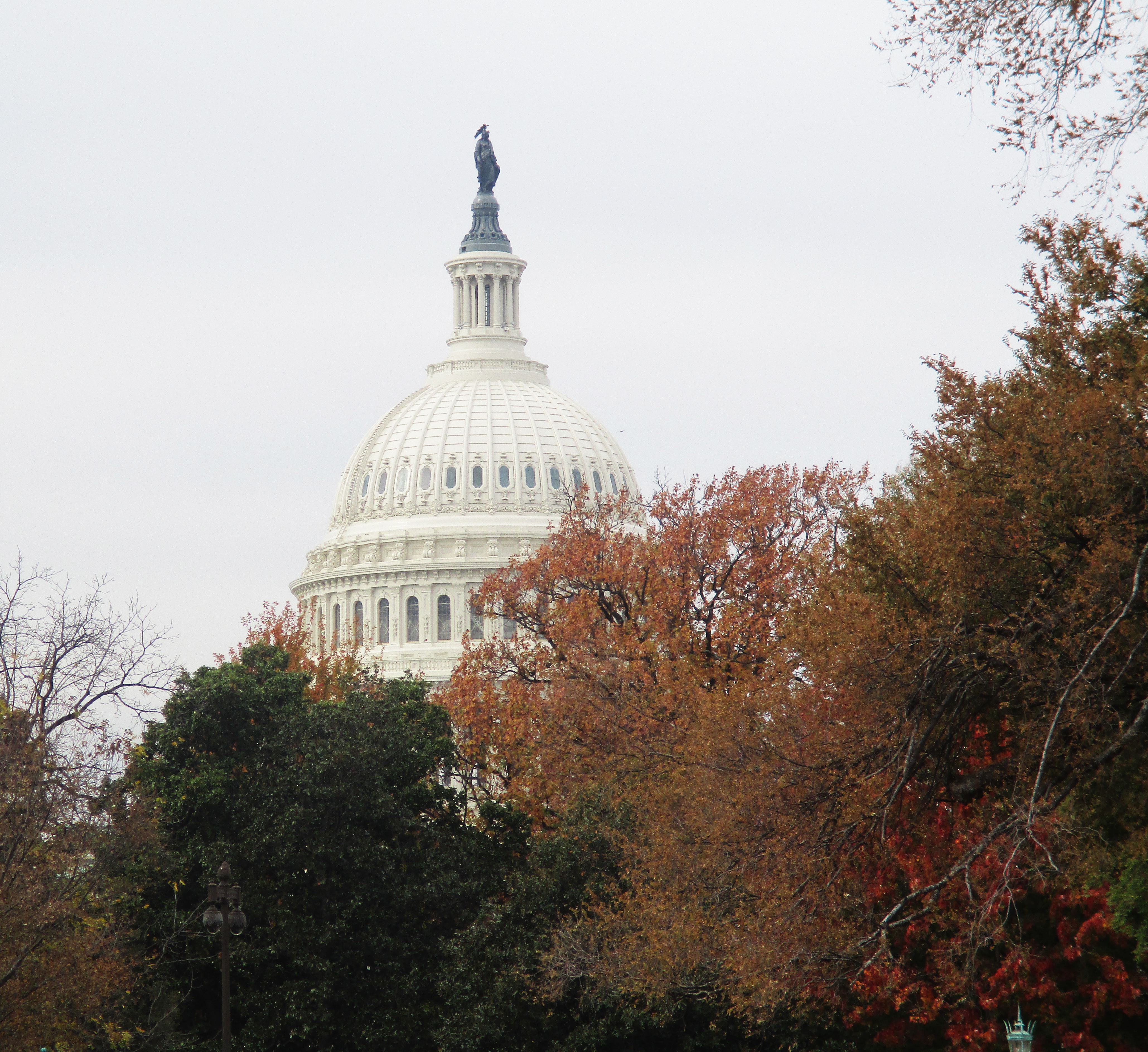 Image of the Capitol Building in the Fall.
